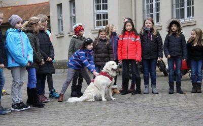 """Tierischer Besuch in der Klasse 5e: Schulhund """"Davina"""""""